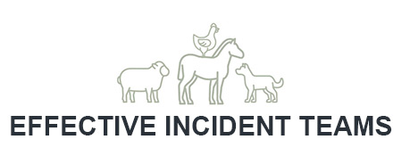 Effective Incident Teams